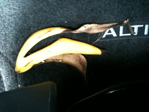 """""""This was in my friend Julie's car (an Altima rental), says Val. """"She left it there a couple days""""."""