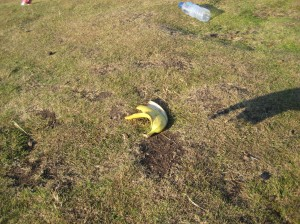 And to top it all off, as if it's not hazardous enough at the top of the Salisbury Crags, with the merciless Scottish wind, somebody left THIS at the very top of Arthur's Seat!